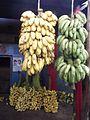 Musa x paradisiaca - India 2.jpg