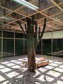 Museu de Arte Contemporânea da Universidade de São Paulo 2016 18.jpg