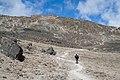 Mweka Route to Barafu Huts.jpg