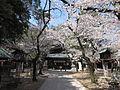 Nagoya Shrine (3).JPG