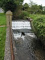 Narrow weir on stream, Westbury-on-Severn - geograph.org.uk - 542096.jpg