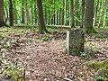Nationalpark Hainich craulaer Kreuz 2020-06-03 30.jpg