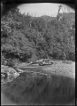 Native bush above a curve in a river. ATLIB 272782.png