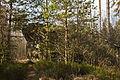 Naturdenkmal Wasserstein im Haslauer Moor 2.jpg