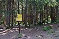 Naturpark Ötztal - Landschaftsschutzgebiet Achstürze-Piburger See - 15.jpg