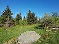 Naturschutzgebiet Schneeberg 03.jpg