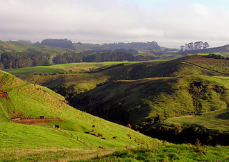 Eltham, New Zealand - Near Eltham, South Taranaki, New Zealand.