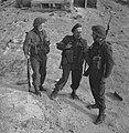 Ned. troepen bevrijden nederland, ze slapen in door duitse gebouwde bunkers Ko, Bestanddeelnr 934-9766.jpg