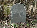 Neglected milestone with benchmark, Carmarthenshire - geograph.org.uk - 1221514.jpg