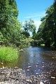 Nehalem River (3735673559).jpg