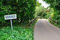 Neopardy - Country Lane (geograph 5901164).jpg