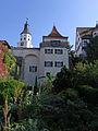Neufra-Schloss-Hängender Garten106276.jpg