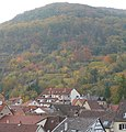 Neustadt, Germany - panoramio (3).jpg
