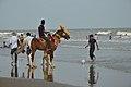 New Digha Beach - East Midnapore 2015-05-01 8819.JPG
