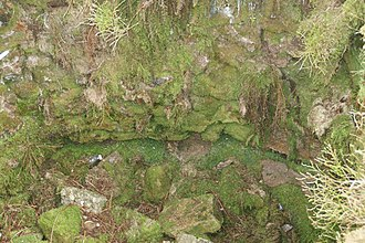 Eylesbarrow mine - ...and its masonry collar