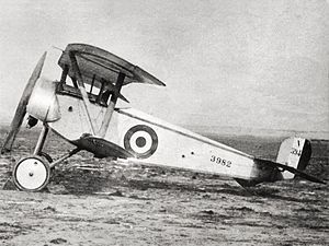 Nieuport 11 - Royal Naval Air Service Nieuport 11