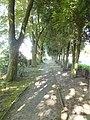Ninove Ninove BP Denderhoutembaan (26) - 311168 - onroerenderfgoed.jpg
