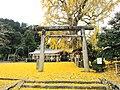 Niu-Sakadono-Shrine-01.jpg