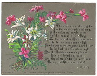 Leontopodium nivale - No.5, Dianthus silvestris, and Gnaphalium leontopodium, (Edelweiss), chromolithograph by Helga von Cramm, with hymn by F. R. Havergal, 1877.