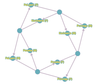 Australian Aboriginal kinship - Graph that sums up kinship in the Martuthunira society. Unnamed nodes stand for different marriage types : they are linked to spouses by simple lines and to children by arrows.
