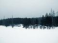 Nordic (2).jpg