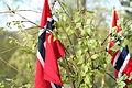 Norway flags IMG 8557.jpg