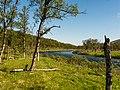 Norwegen Langfjordelva (Laggu) P1290410.jpg
