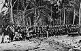 O'Sullivan, Timothy H. - Der tropische Wald (Zeno Fotografie).jpg