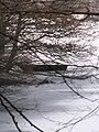 Obersee 13 db.jpg