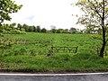 Old Gate - geograph.org.uk - 170930.jpg