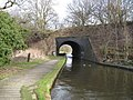 Old Railway Bridge over the Canal - geograph.org.uk - 1195205.jpg