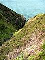On The South Ayrshire Coast - geograph.org.uk - 1313378.jpg