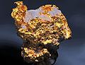 Or natif et quartz (USA-CA) 3.JPG