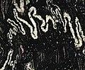Orinoco Granite (garnetiferous convoluted gneiss) 4 (33171259504).jpg