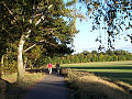 Ostseeküstenradweg bei Warnemünde.JPG