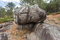 Outeiro da pena redonda. Parque arqueolóxico de Campo Lameiro CL14.jpg