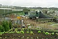Over the allotments (2197156509).jpg