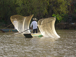 Fishing with nets, Mexico
