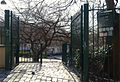 P1310604 Paris XX jardin rue Pali-kao rwk.jpg
