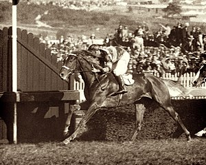 Australian Derby - Peter Pan, 1932 AJC Derby winner. Jockey Jim Pike