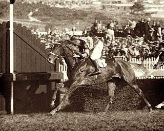 Ranvet Stakes