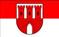 POL gmina Gąsawa flag.PNG