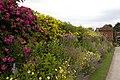Packwood House garden 1 (4764815042).jpg