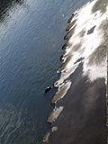 Palplanches quai de Trinquetaille.jpg