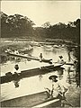 Panama and the canal in picture and prose (1913) (14781082984).jpg