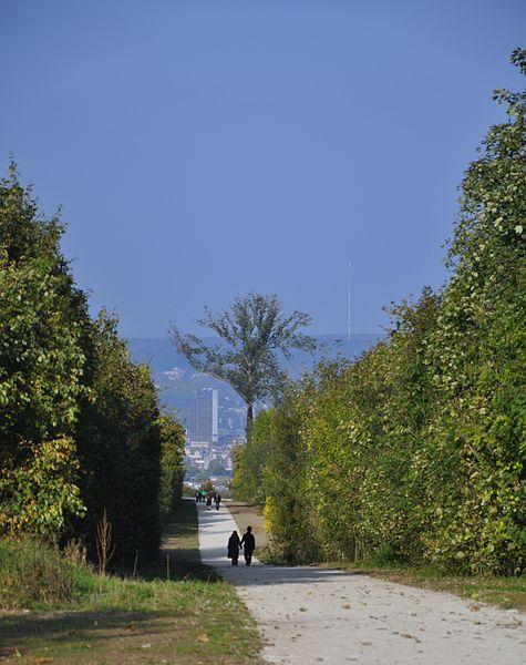 Vue sur Nancy depuis une allée du parc du château de Brabois