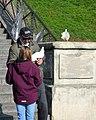 Paris 2016 10 12 Walk to Montmartre (43) (32957783064).jpg