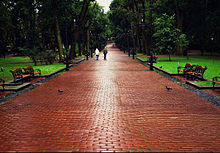 Парк імені івана франка влітку після