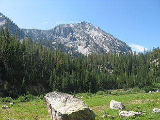Sawtooth Wilderness - A meadow and spruce-fir forests below Parks Peak