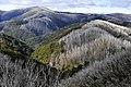Parque Nacional Alpino 02.jpg